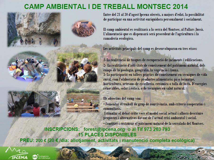 camp_ambiental_2014.1