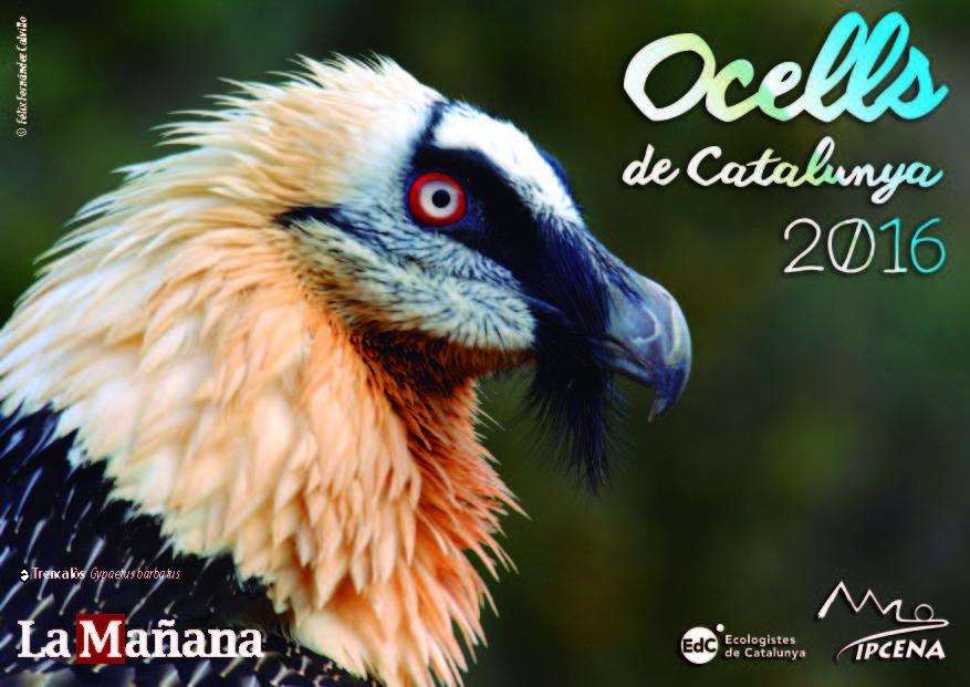 calendari2016_pag_Página_01
