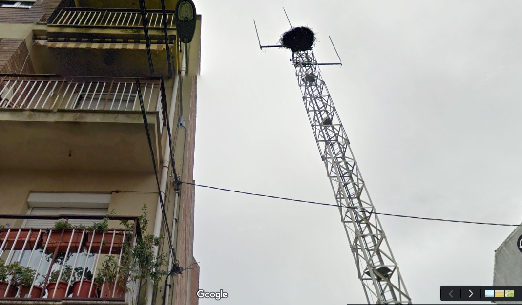 antena alguaire
